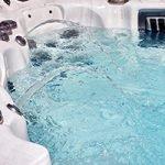 swim spa chemicals